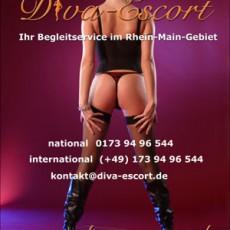 Diva Escort Service Frankfurt, auch besuchbar